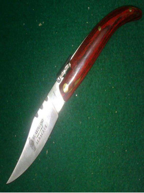 Penknife of wood tip