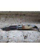 Penknife from Albacete of bull horn nº1
