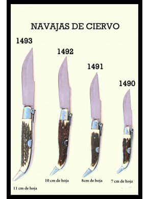 copy of NAVAJA ALBACETEÑA...